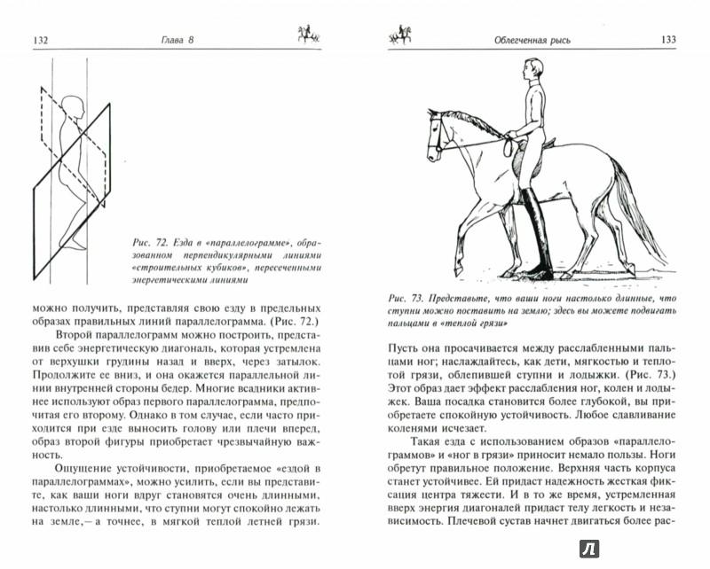 Иллюстрация 1 из 19 для Как достичь совершенства в верховой езде. Навыки центрированной верховой езды - Салли Свифт | Лабиринт - книги. Источник: Лабиринт