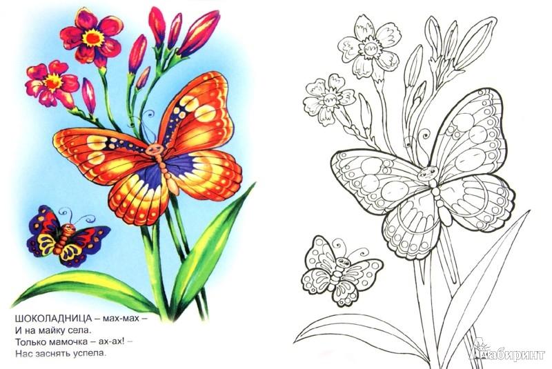 Иллюстрация 1 из 21 для Знакомимся с бабочками - Юрий Чичев   Лабиринт - книги. Источник: Лабиринт