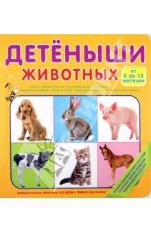 Детёныши животных (от 0 до 18 месяцев)