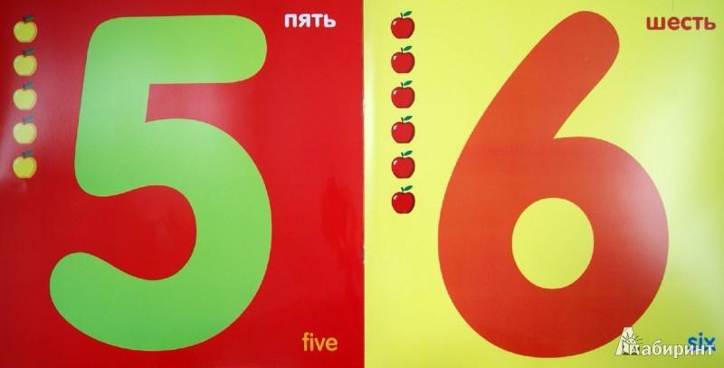 Иллюстрация 1 из 6 для Счет в цифрах | Лабиринт - книги. Источник: Лабиринт