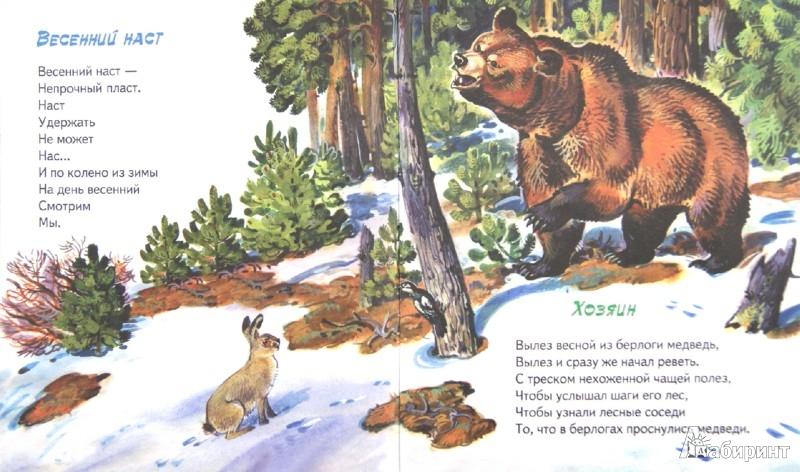 Иллюстрация 1 из 17 для По опушке шла весна - Владимир Степанов | Лабиринт - книги. Источник: Лабиринт