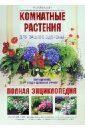 Комнатные растения для вашего здоровья: выращивание, уход и целебный эффект: полная энциклопедия, Цицилин Андрей Николаевич