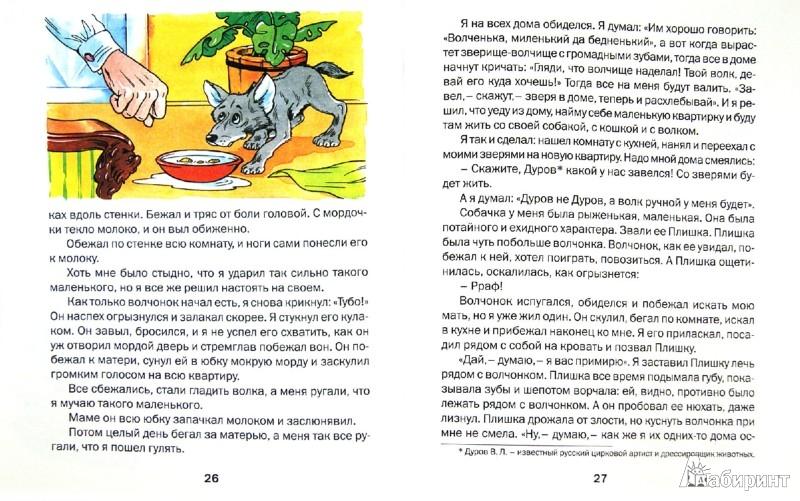 Иллюстрация 1 из 20 для Рассказы о животных - Борис Житков | Лабиринт - книги. Источник: Лабиринт
