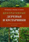 Декоративные деревья и кустарники. Иллюстрированный справочник