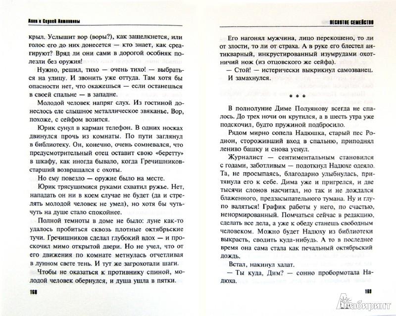 Иллюстрация 1 из 14 для Несвятое семейство - Литвинова, Литвинов | Лабиринт - книги. Источник: Лабиринт