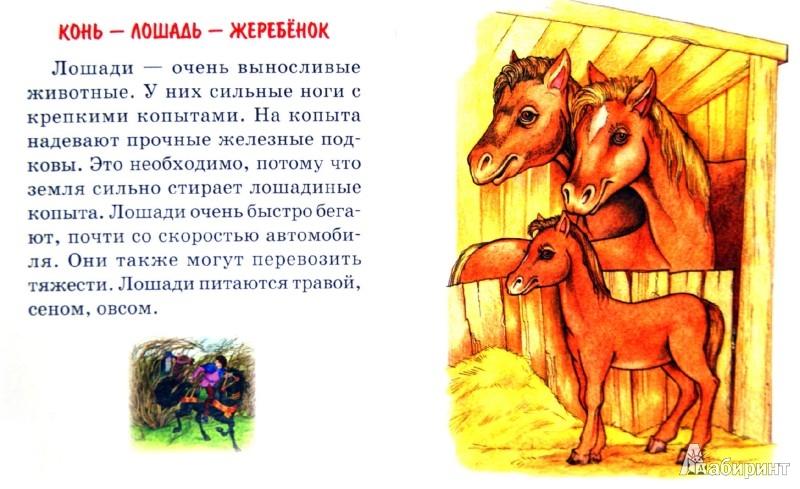 Иллюстрация 1 из 11 для Семья - Галина Шалаева | Лабиринт - книги. Источник: Лабиринт