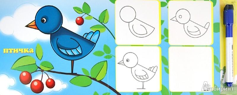 Иллюстрация 1 из 16 для Книжка с маркером. Учимся рисовать | Лабиринт - книги. Источник: Лабиринт