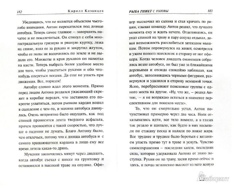 Иллюстрация 1 из 8 для Рыба гниет с головы - Кирилл Казанцев | Лабиринт - книги. Источник: Лабиринт