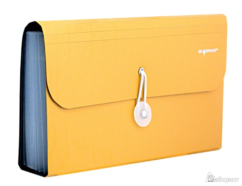 Иллюстрация 1 из 4 для Папка-портфель на резинке. DISCOVERY. Цвет: охра (255036-26) | Лабиринт - канцтовы. Источник: Лабиринт