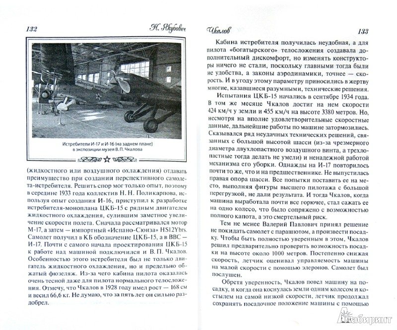Иллюстрация 1 из 11 для Чкалов. Взлет и падение великого пилота - Николай Якубович | Лабиринт - книги. Источник: Лабиринт
