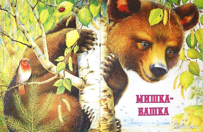 Иллюстрация 1 из 14 для Рассказы и сказки о природе - Пришвин, Бианки, Сладков, Шим | Лабиринт - книги. Источник: Лабиринт