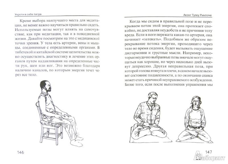 Иллюстрация 1 из 10 для Укроти в себе тигра. Тибетское учение о совершенствовании повседневной жизни - Аконг Ринпоче | Лабиринт - книги. Источник: Лабиринт