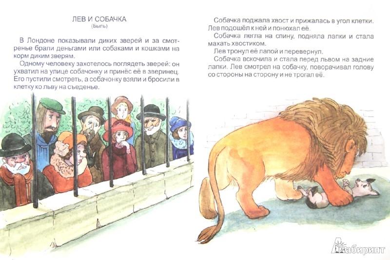Иллюстрация 1 из 5 для Орёл. Лев и собачка - Лев Толстой   Лабиринт - книги. Источник: Лабиринт