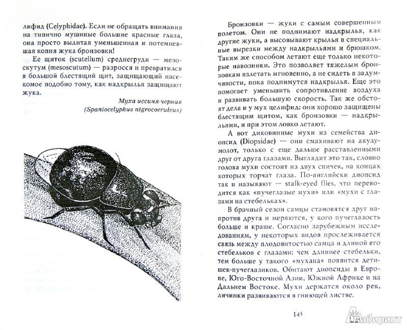 Иллюстрация 1 из 5 для Новые письма насекомых - Ольга Кувыкина | Лабиринт - книги. Источник: Лабиринт