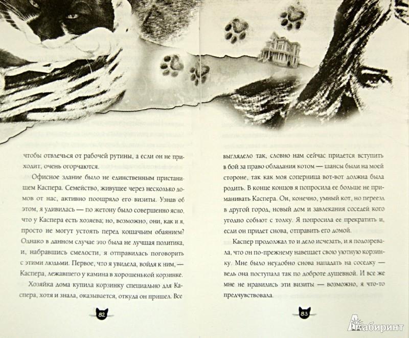 Иллюстрация 1 из 12 для Каспер, кот-путешественник - Сьюзен Финден | Лабиринт - книги. Источник: Лабиринт