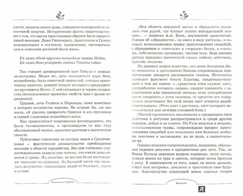 Иллюстрация 1 из 5 для Магический травник - Надежда Зимина | Лабиринт - книги. Источник: Лабиринт