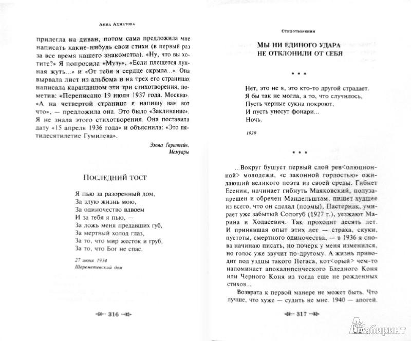 Иллюстрация 1 из 6 для Стихотворения. Поэмы - Анна Ахматова | Лабиринт - книги. Источник: Лабиринт