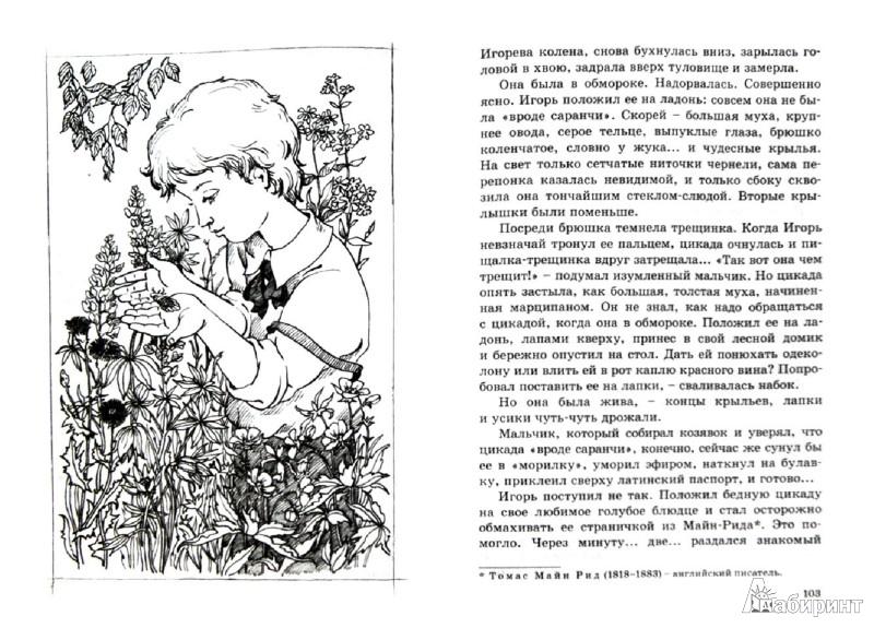Иллюстрация 1 из 26 для Чудесное лето - Саша Черный | Лабиринт - книги. Источник: Лабиринт