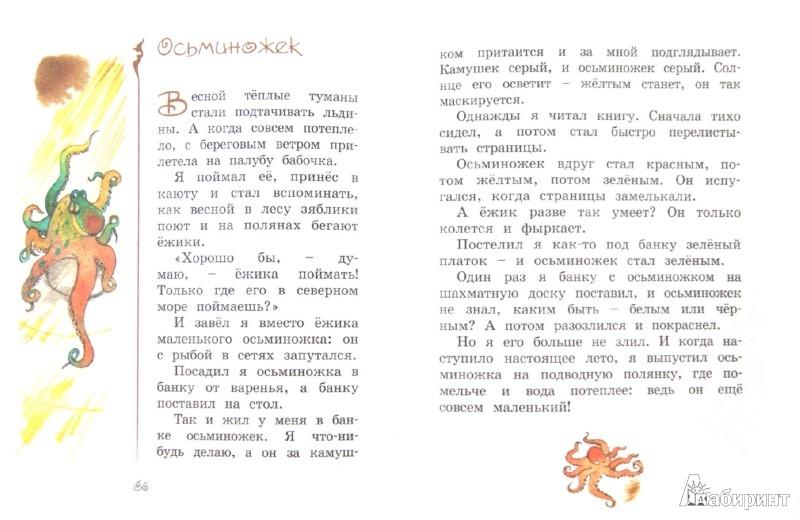 Иллюстрация 1 из 36 для Хитрый Бурундук. Рассказы и маленькие повести - Геннадий Снегирев | Лабиринт - книги. Источник: Лабиринт