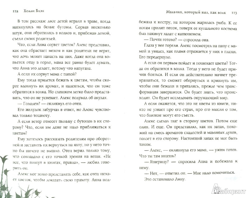 Иллюстрация 1 из 11 для С точки зрения Тролля - Датлоу, Виндлинг   Лабиринт - книги. Источник: Лабиринт