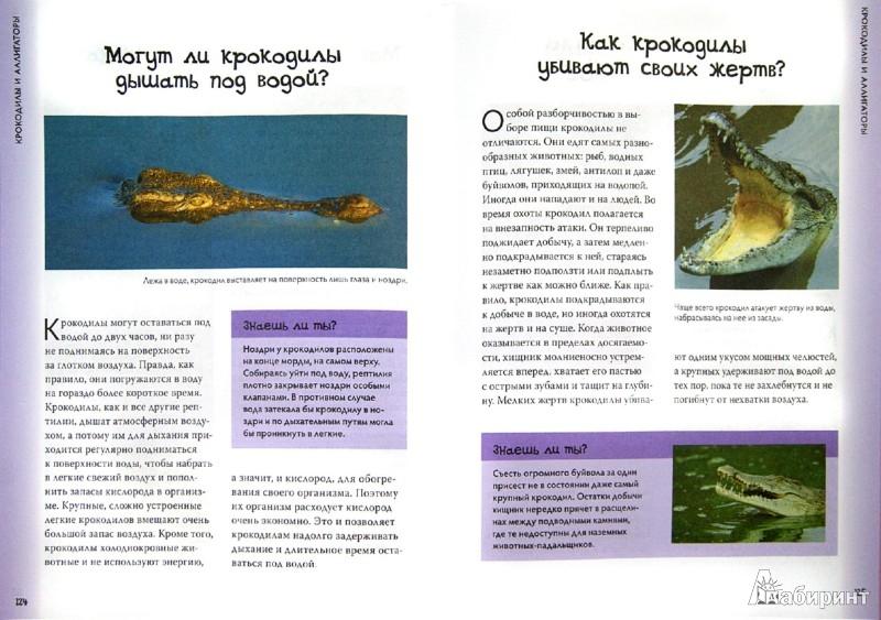 Иллюстрация 1 из 27 для Рептилии и амфибии - Том Джексон | Лабиринт - книги. Источник: Лабиринт