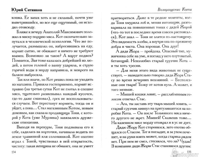 Иллюстрация 1 из 10 для Возвращение Кота - Юрий Ситников | Лабиринт - книги. Источник: Лабиринт
