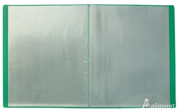 Иллюстрация 1 из 7 для Папка A4 с 20 вкладышами, зеленая (DB20AB-03) | Лабиринт - канцтовы. Источник: Лабиринт