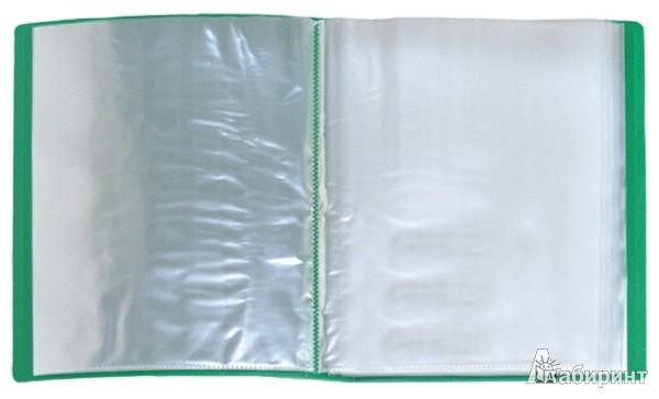 Иллюстрация 1 из 9 для Папка A4 с 60 вкладышами, зеленая (DB60AB-03)   Лабиринт - канцтовы. Источник: Лабиринт