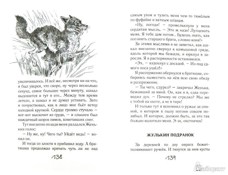 Иллюстрация 1 из 33 для Охотничья избушка - Николай Красильников | Лабиринт - книги. Источник: Лабиринт