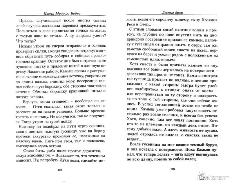 Иллюстрация 1 из 27 для Лесные духи - Александр Прозоров   Лабиринт - книги. Источник: Лабиринт