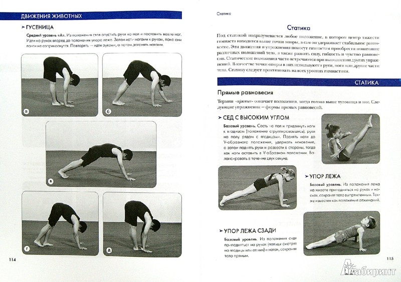 Иллюстрация 1 из 15 для Спортивная гимнастика. Полное руководство по подготовке.   Лабиринт - книги. Источник: Лабиринт