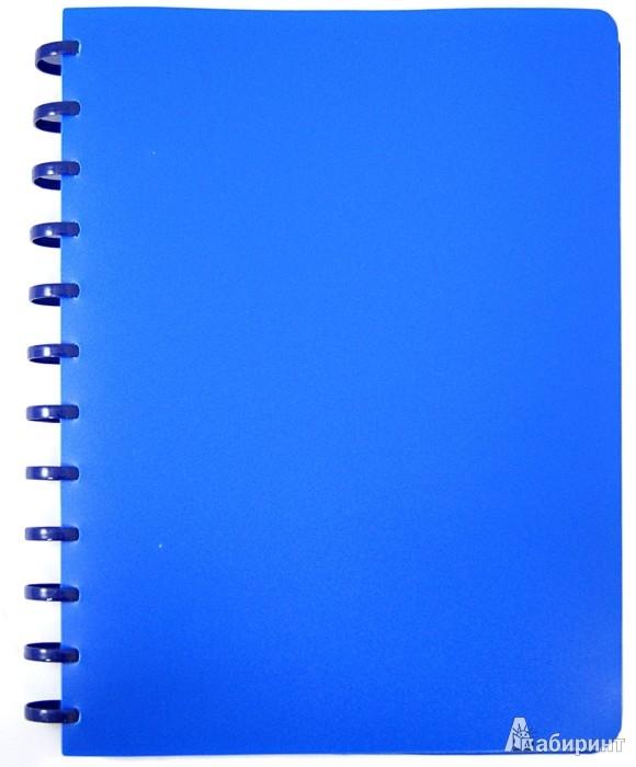 Иллюстрация 1 из 2 для Папка на кольцах. 40 файлов. Цвет: синий (CY40MG-B) | Лабиринт - канцтовы. Источник: Лабиринт