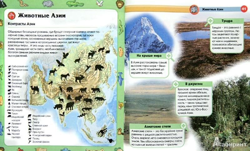 Иллюстрация 1 из 30 для Животные - Элиза Прати   Лабиринт - книги. Источник: Лабиринт