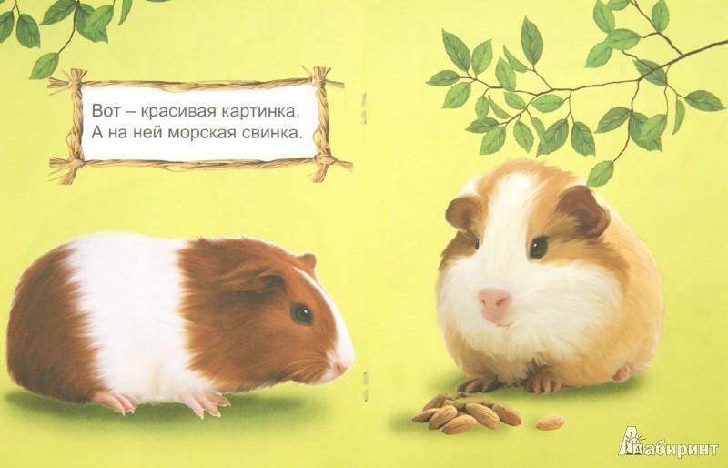 Иллюстрация 1 из 19 для Кто в доме живет? | Лабиринт - книги. Источник: Лабиринт