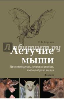 Летучие мыши. Происхождение, места обитания, тайны образа жизни