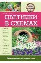 Цветники в схемах, Вечерина Елена Юрьевна