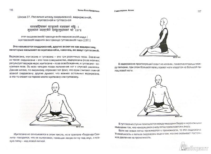 Иллюстрация 1 из 31 для Хатха-йога прадипика. Объяснение хатха-йоги - Муктибодхананда Свами | Лабиринт - книги. Источник: Лабиринт