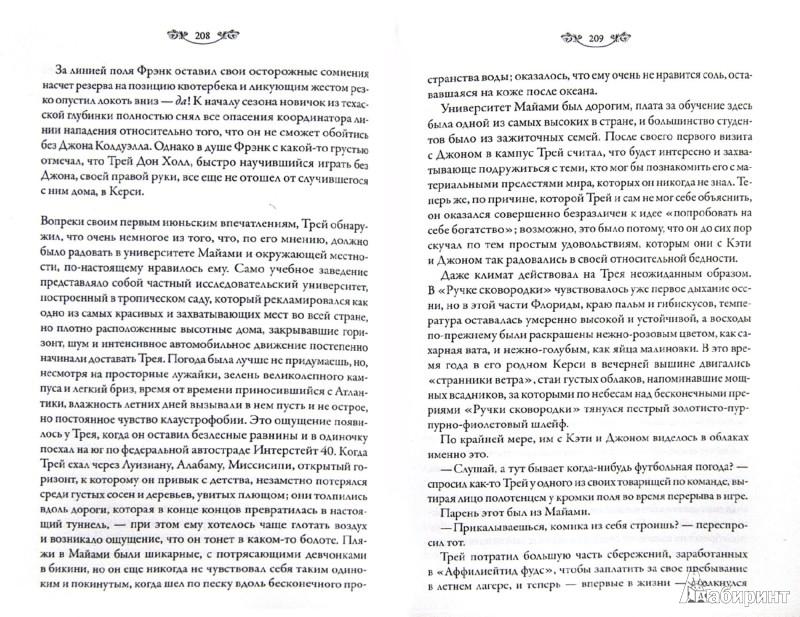 Иллюстрация 1 из 18 для Перекати-поле - Лейла Мичем   Лабиринт - книги. Источник: Лабиринт