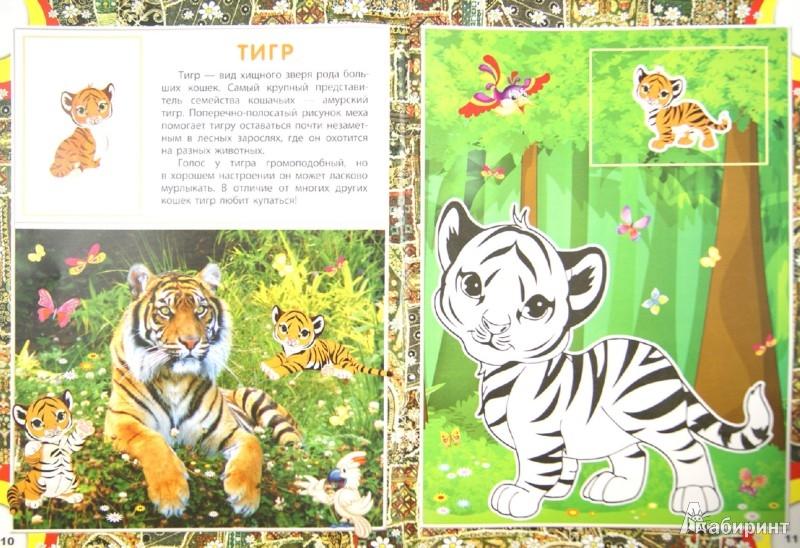 Иллюстрация 1 из 7 для EurAsia. Животный мир Европы и Азии   Лабиринт - книги. Источник: Лабиринт