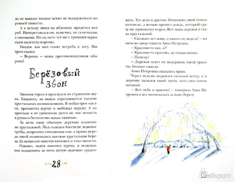 Иллюстрация 1 из 31 для Рябиновое солнце - Станислав Востоков   Лабиринт - книги. Источник: Лабиринт