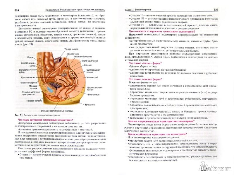 Иллюстрация 1 из 12 для Гинекология. Руководство к практическим занятиям. Учебное пособие. 3-е издание - Виктор Радзинский | Лабиринт - книги. Источник: Лабиринт