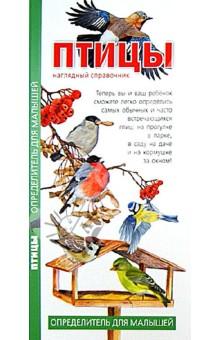 Птицы. Наглядный справочник. Определитель для малышей