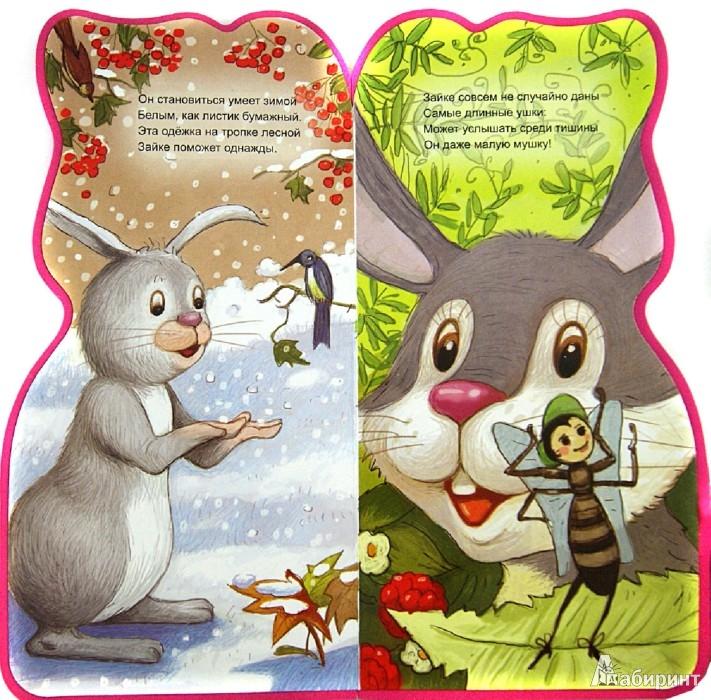 Иллюстрация 1 из 6 для Что умеет зайка? - Б. Вайнер | Лабиринт - книги. Источник: Лабиринт