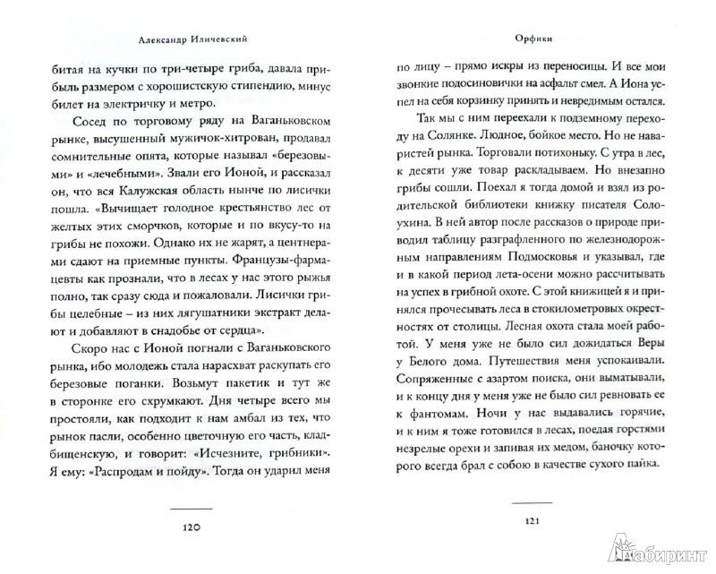 Иллюстрация 1 из 14 для Орфики - Александр Иличевский | Лабиринт - книги. Источник: Лабиринт