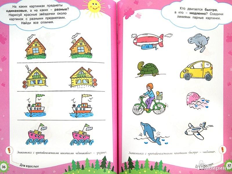 Иллюстрация 1 из 33 для Свойства предметов - Ольга Земцова | Лабиринт - книги. Источник: Лабиринт