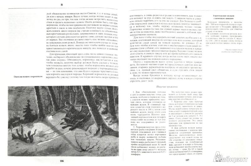 Иллюстрация 1 из 7 для Русская охота - Леонид Сабанеев | Лабиринт - книги. Источник: Лабиринт