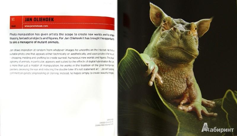 Иллюстрация 1 из 2 для Crazy Photography / Крэзи фотография - Diane Routex   Лабиринт - книги. Источник: Лабиринт