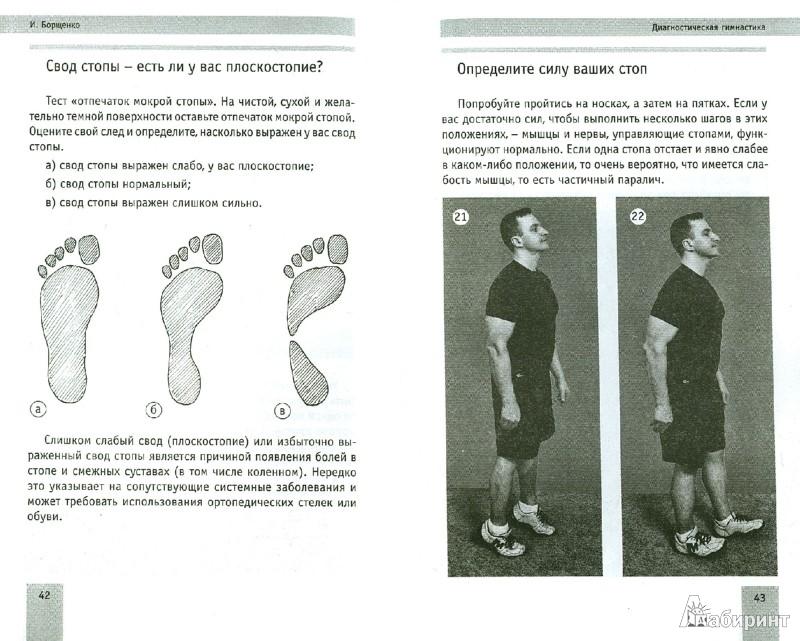 Иллюстрация 1 из 5 для 5 минут изометрических упражнений для тех, кто не отрывает попы от стула - Игорь Борщенко | Лабиринт - книги. Источник: Лабиринт