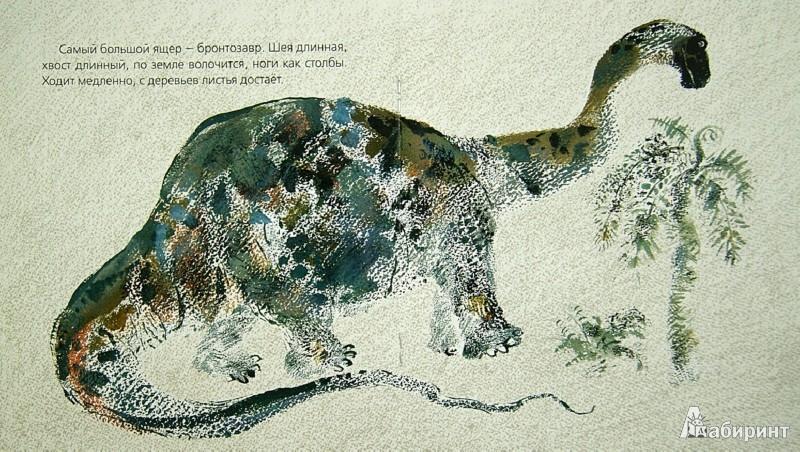 Иллюстрация 1 из 31 для Невиданные звери - Никита Чарушин | Лабиринт - книги. Источник: Лабиринт