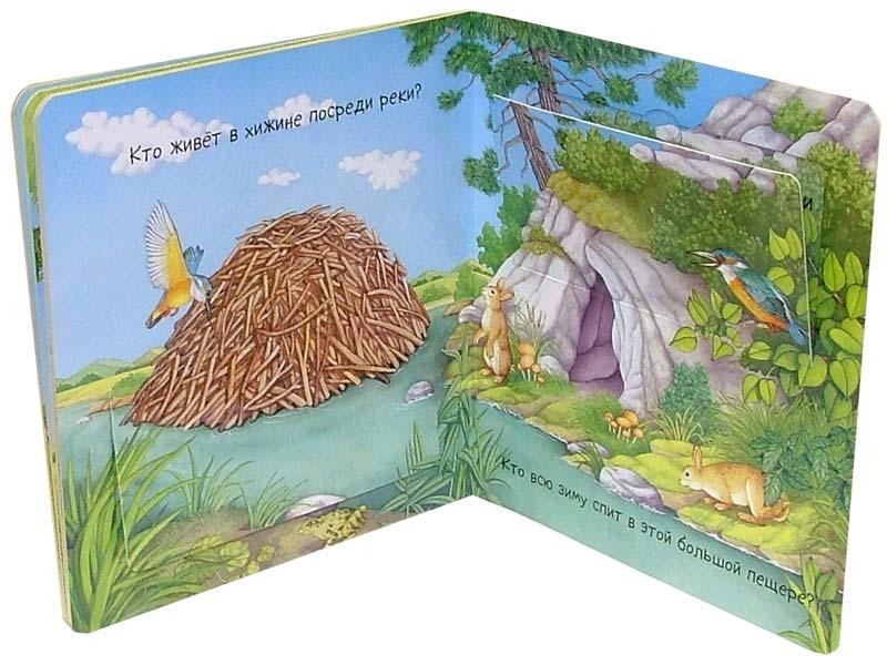 Иллюстрация 1 из 15 для В поле и в лесу. Кто это там - Эмили Бомон | Лабиринт - книги. Источник: Лабиринт